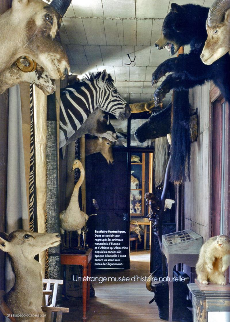 French natural history musee