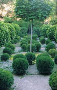 August gardens 2