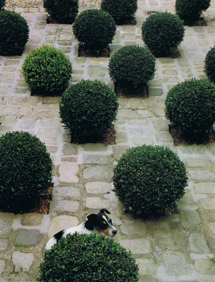 Normandy garden HG