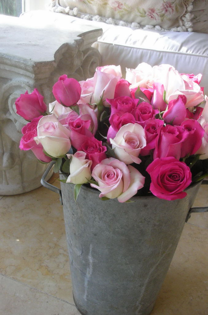 French rose bucket
