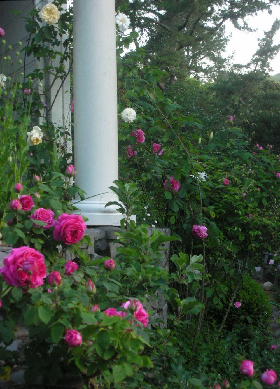 Trouvais garden photos