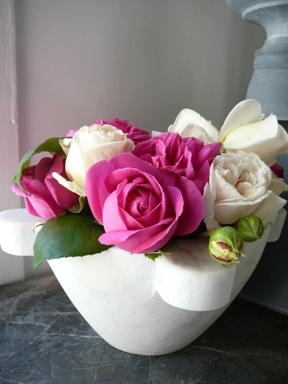 French Garden roses