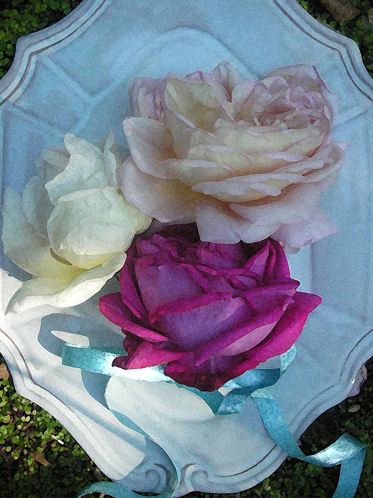 Trouvais garden roses