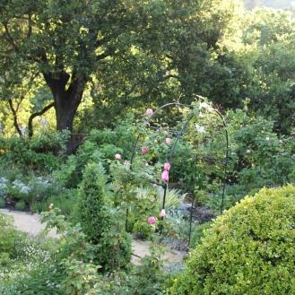 View above garden