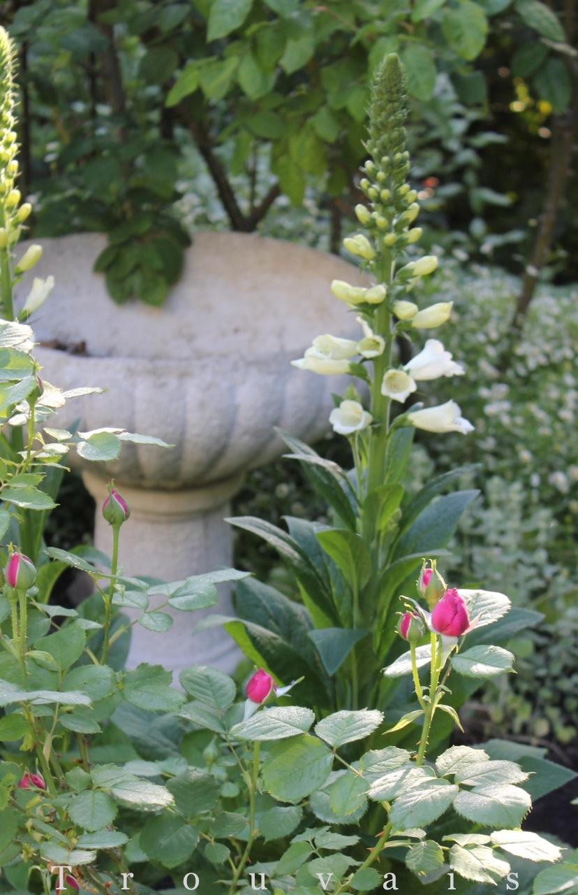 Trouvais Spring 2013
